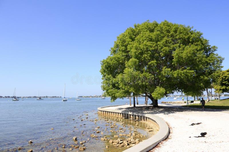 Parco e porticciolo dell'isola di Sarasota fotografia stock libera da diritti