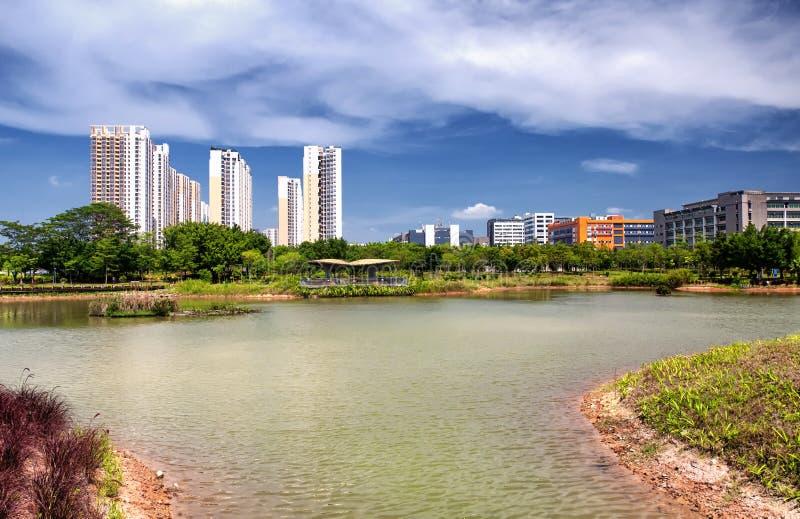 Parco ecologico Shenzhen Cina della mangrovia di Futian fotografia stock