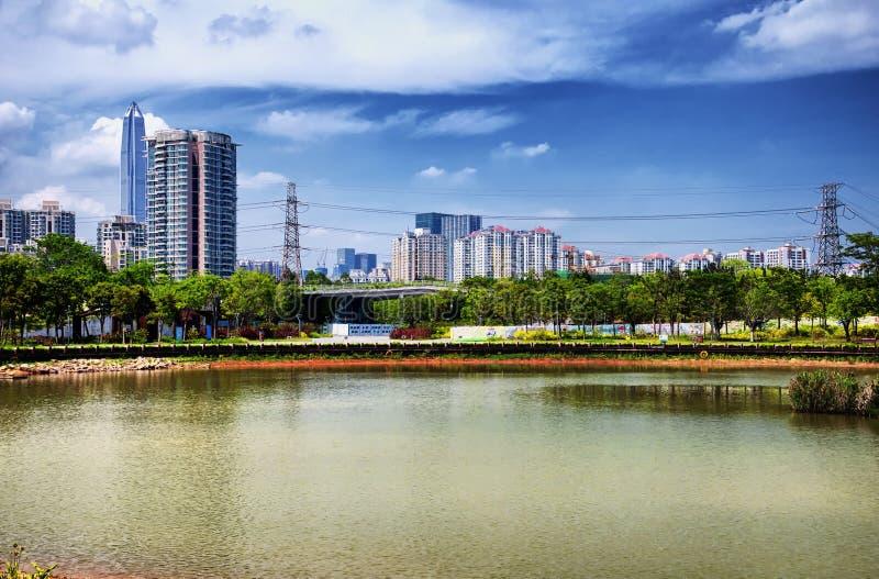 Parco ecologico Shenzhen Cina della mangrovia di Futian immagine stock libera da diritti