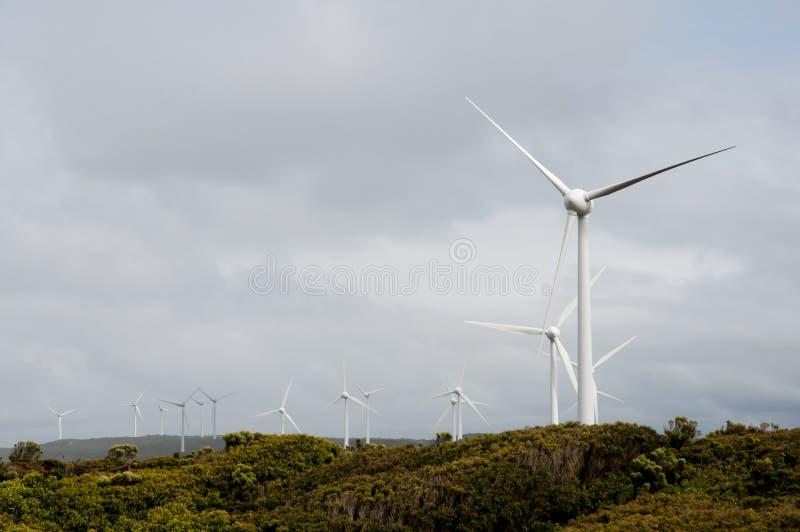 Parco eolico di Albany fotografia stock
