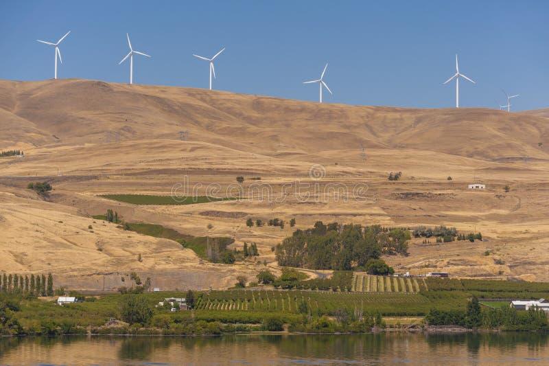 Parco eolico lungo il fiume Columbia fotografia stock libera da diritti