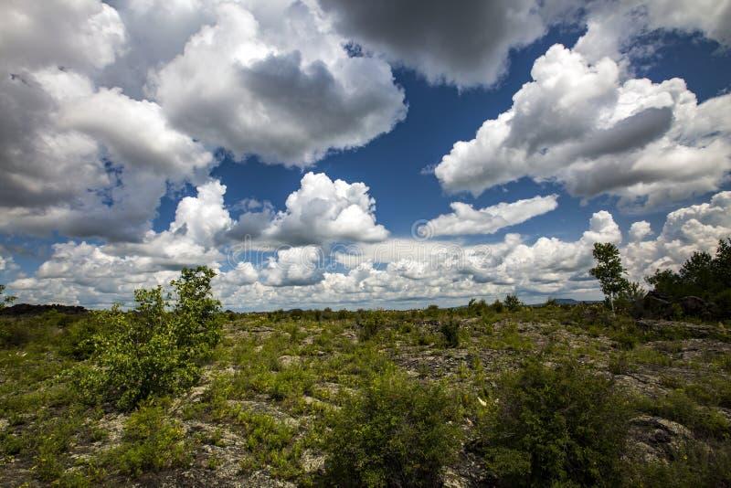 Parco geologico del mondo di wudalianchi della Cina, riserva di biosfera del mondo immagini stock