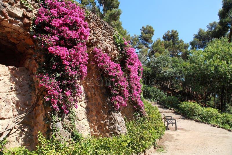Parco Guell da Antoni Gaudi, Barcellona, Spagna immagini stock libere da diritti