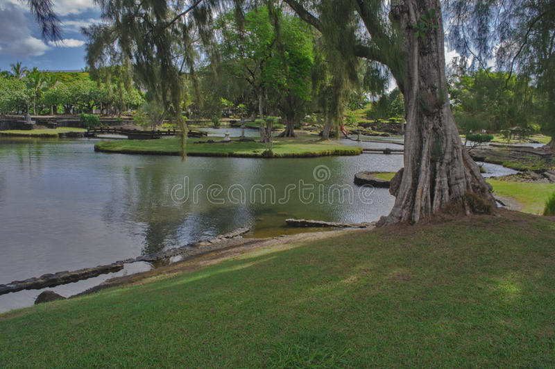 Parco in Hilo fotografia stock libera da diritti