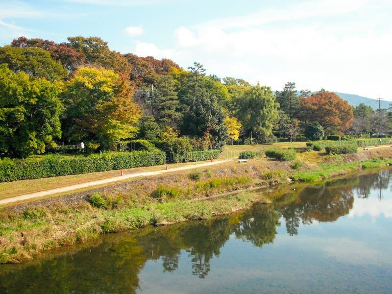 Parco lungo il fiume fotografia stock