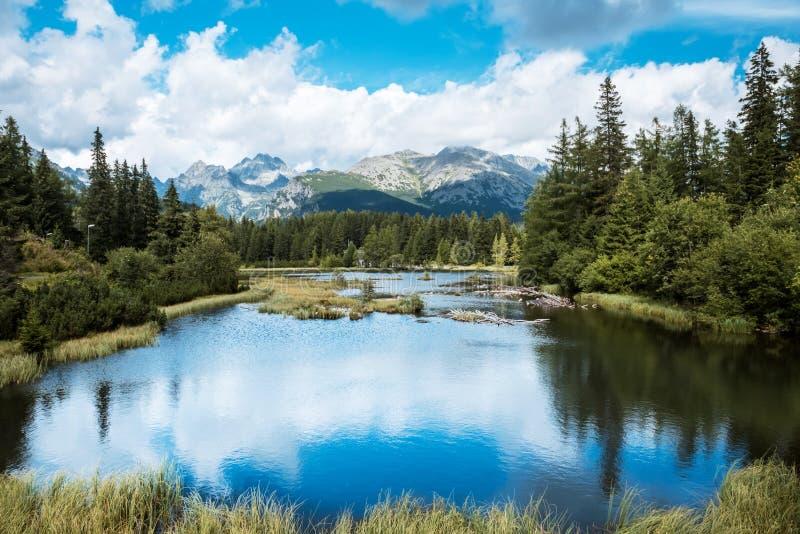 Parco nazionale alto Tatras, Slovacchia di Nove Strbske Pleso del lago mountain fotografia stock libera da diritti