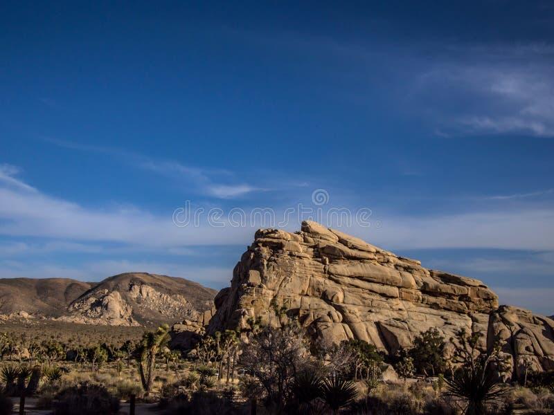 Parco nazionale del deserto dell'albero di Joshua fotografia stock libera da diritti