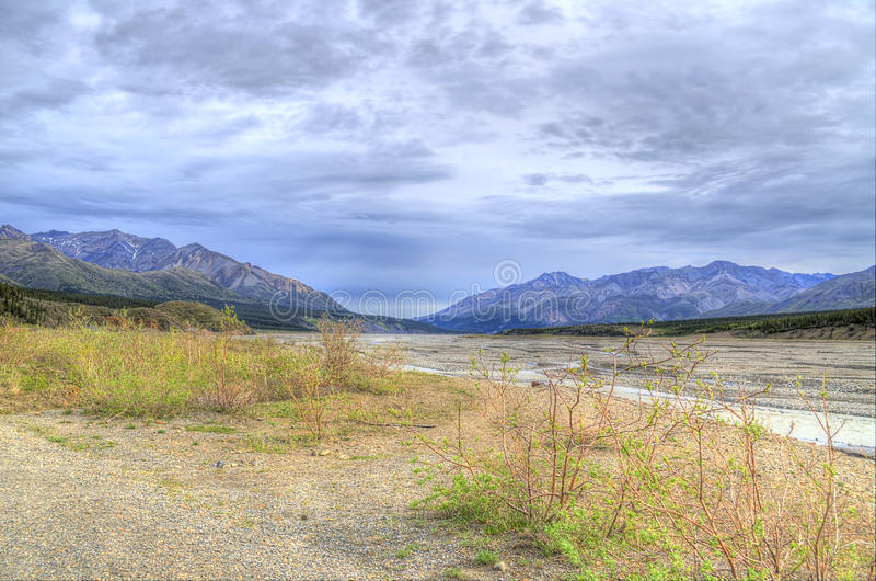 Parco nazionale del parco di Denali immagine stock
