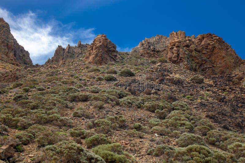 Parco nazionale del Teide, vista del parco magico immagini stock libere da diritti