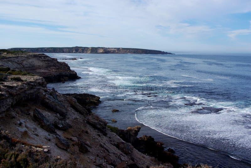 Parco nazionale della baia della bara, penisola di Eyre immagini stock