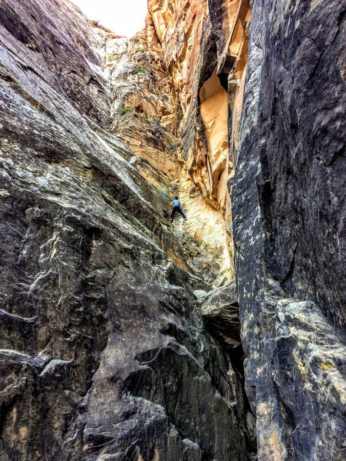 Parco nazionale della scogliera del Campidoglio, Utah, U Gioventù rampicante dell'adolescente della grande del lavaggio gola di a fotografia stock
