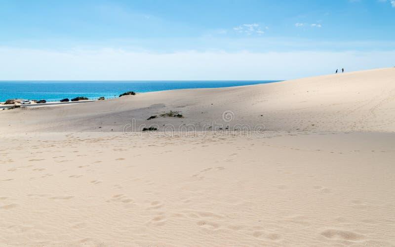 Parco nazionale delle dune in Corralejo, Fuerteventura immagini stock libere da diritti