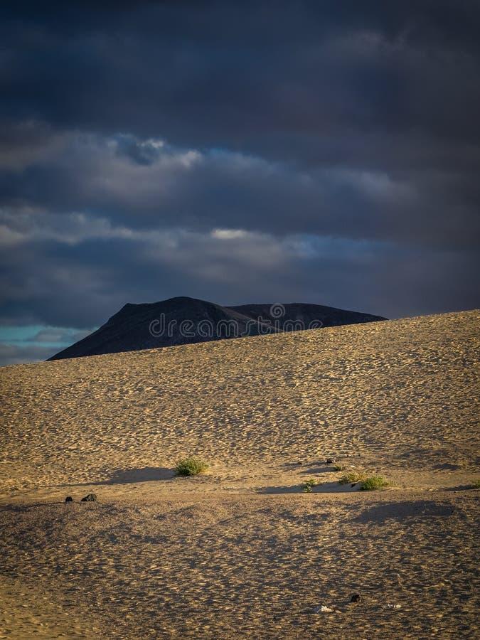 Parco nazionale delle dune di Corralejo immagine stock libera da diritti
