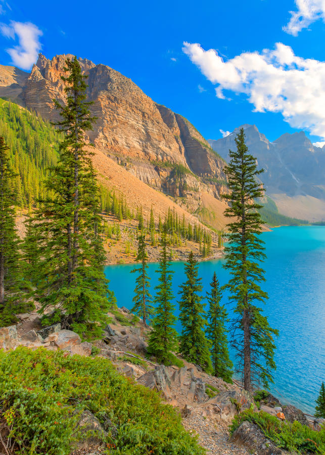 Parco nazionale di Banff del lago moraine fotografia stock libera da diritti