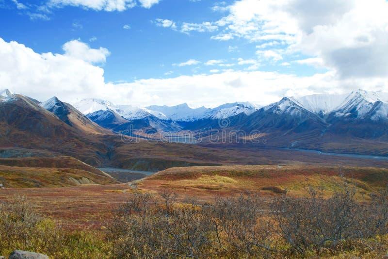 Parco nazionale di Denali fotografie stock