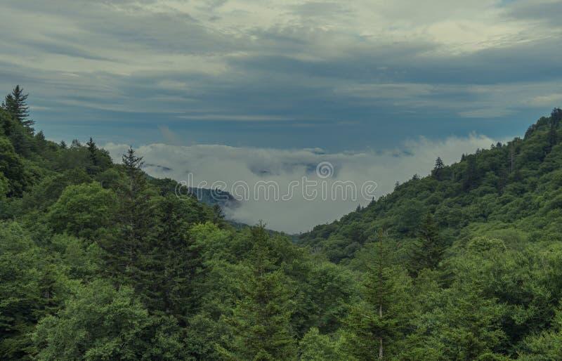 Parco nazionale di Great Smoky Mountains del paesaggio di vista fotografia stock