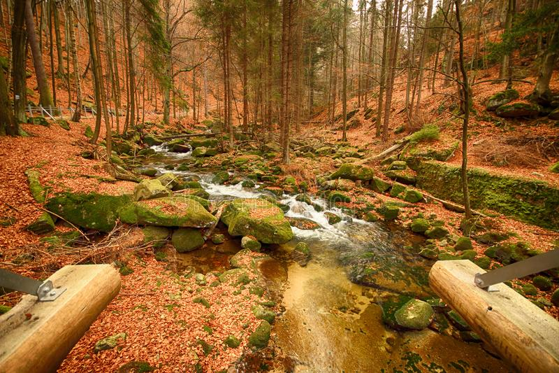 Parco nazionale di Karkonoski, Szklarska Poreba, Polonia fotografie stock