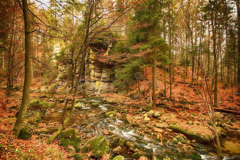 Parco nazionale di Karkonoski, Szklarska Poreba, Polonia fotografia stock libera da diritti