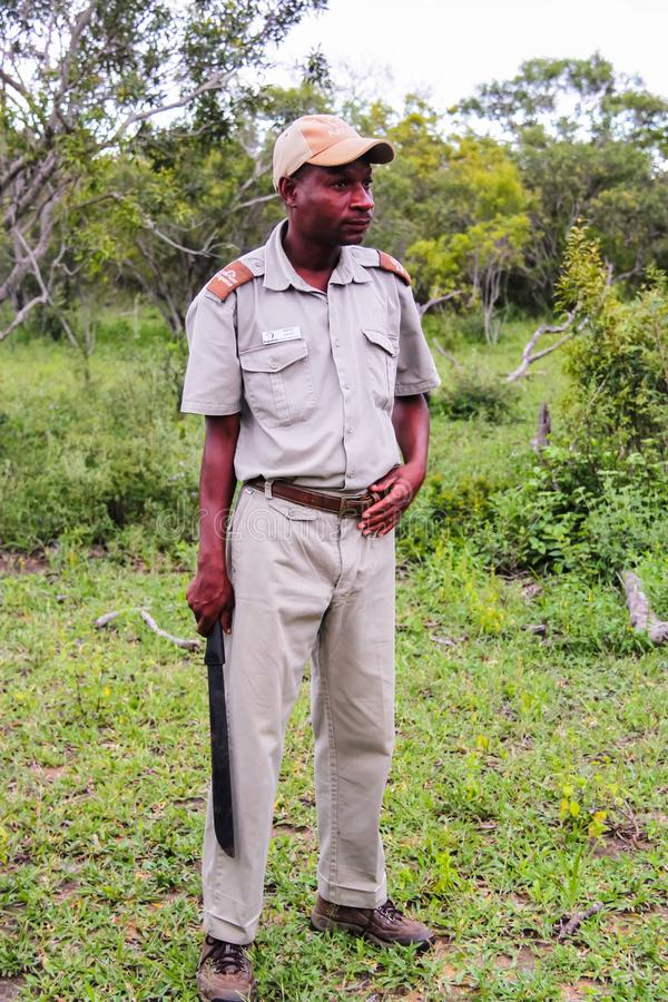 Parco nazionale di Kruger, Sudafrica - 2011: Guida di safari che tiene un machete fotografia stock libera da diritti