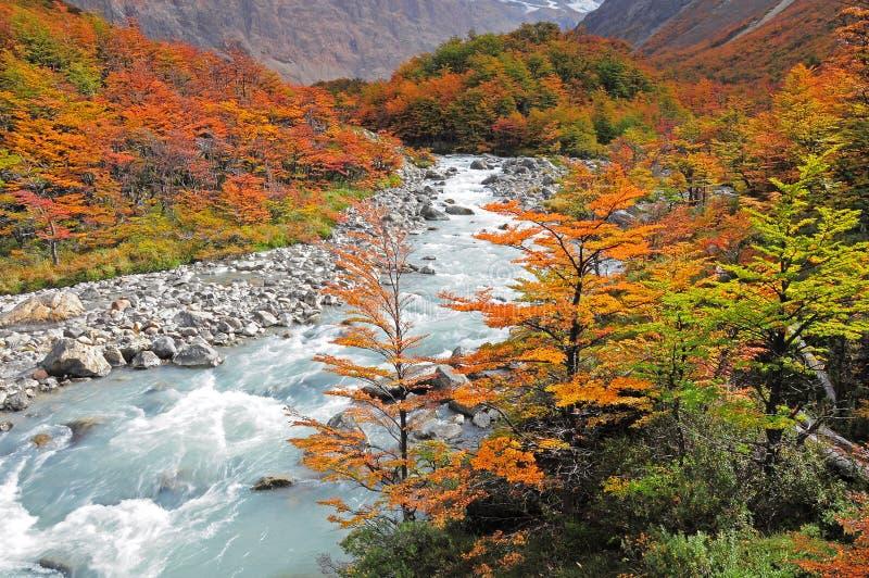 Parco nazionale di Los Glaciares. fotografie stock