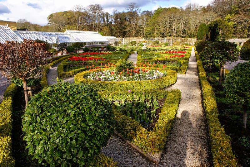 Parco nazionale di Muckross Killarney dei giardini, Irlanda fotografia stock libera da diritti