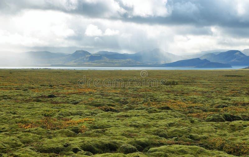 Parco nazionale di Pingvellir in Islanda immagine stock