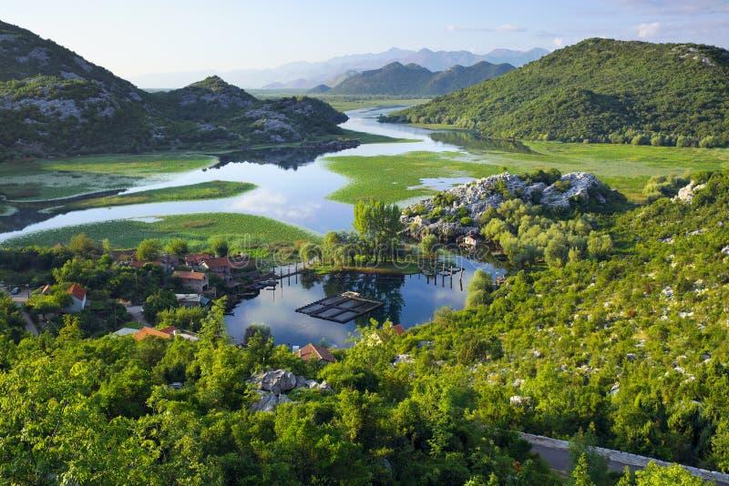Parco nazionale di Skadar del lago, Montenegro fotografia stock
