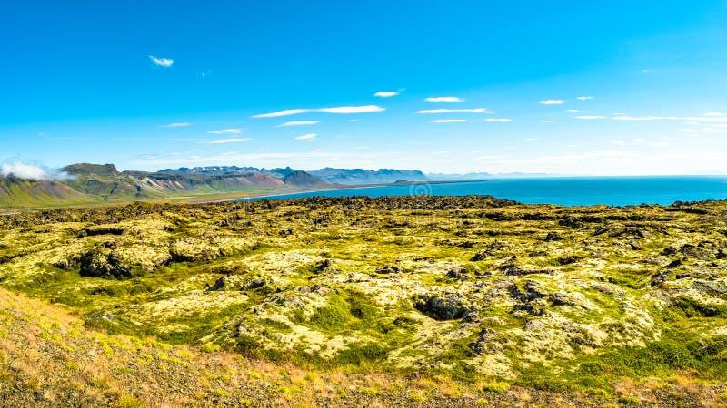 Parco nazionale di Snaefellsjoekull, Londrangar, Hellnar, paesaggio variopinto e selvaggio islandese sull'Islanda, ad ora legale immagini stock