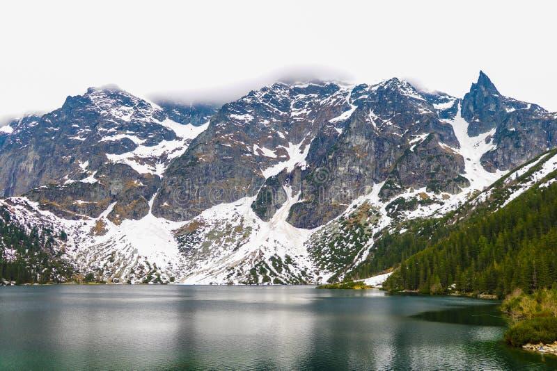 Parco nazionale di Tatra, Polonia Lago famoso Morskie Oko mountains o lago eye del mare nella mattina di estate Bella vista sceni fotografie stock libere da diritti