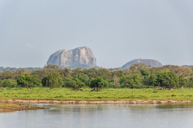Parco nazionale di Yala del paesaggio, Sri Lanka fotografie stock