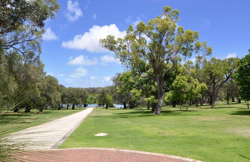 Parco nazionale di Yanchep: Australia occidentale fotografia stock