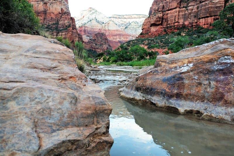 Parco nazionale di Zion in America fotografia stock