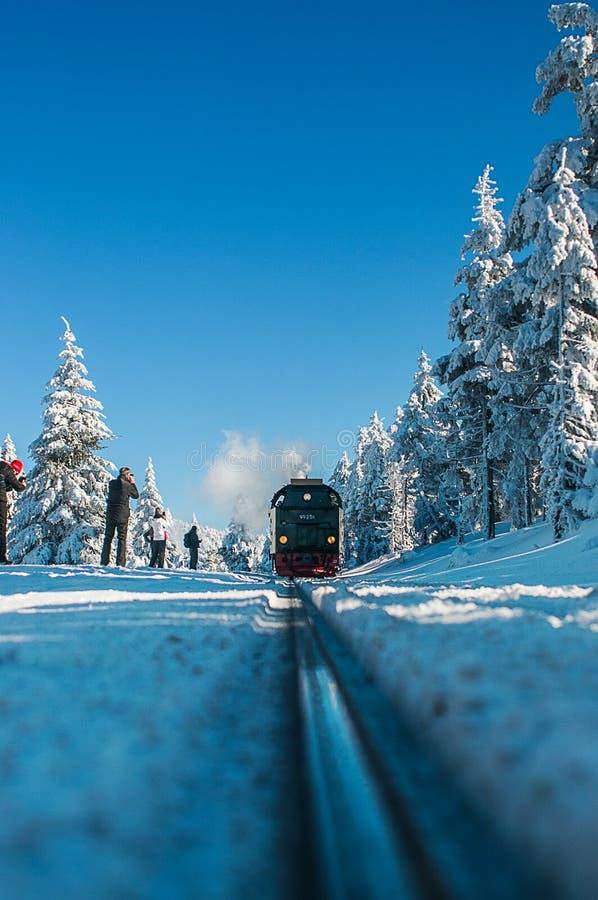 Parco nazionale Harz di Brocken del paesaggio di inverno fotografia stock