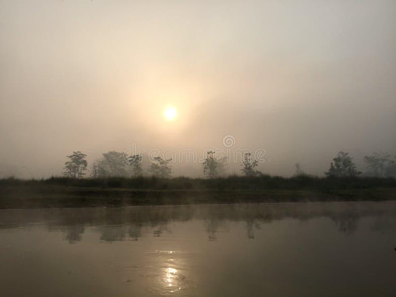 Parco nazionale reale di Chitwan - Nepal immagini stock libere da diritti