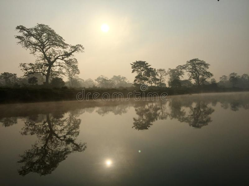 Parco nazionale reale di Chitwan - Nepal fotografia stock libera da diritti