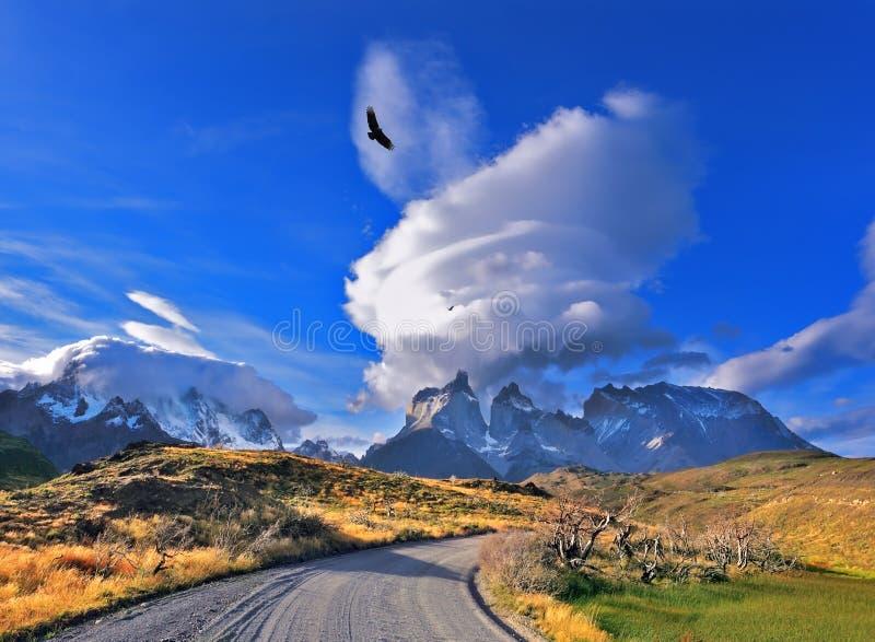 Parco nazionale Torres del Paine nel Cile del sud fotografia stock