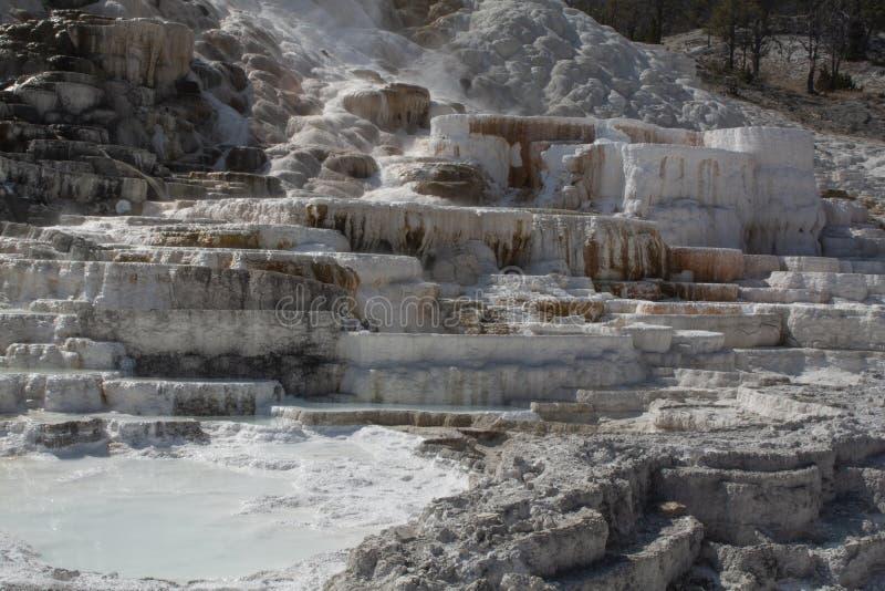 Parco nazionale U di Yellowstone S National Park Service immagini stock