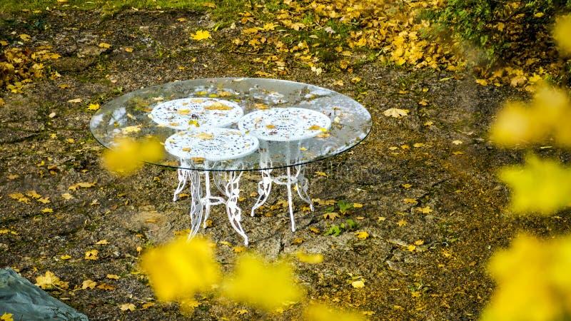 Parco pacifico vuoto, tavola bianca classica fotografia stock libera da diritti