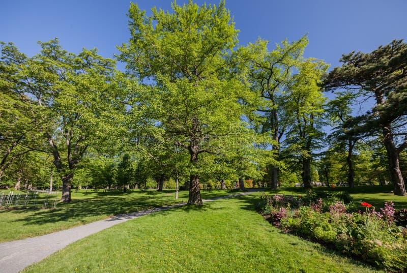 Parco pubblico immagine stock