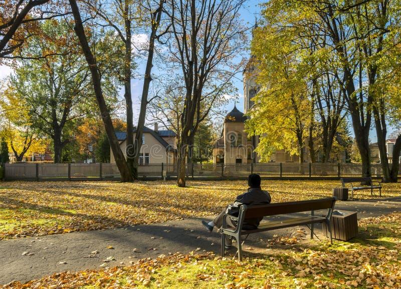 Parco pubblico centrale in Jurmala, Lettonia immagine stock