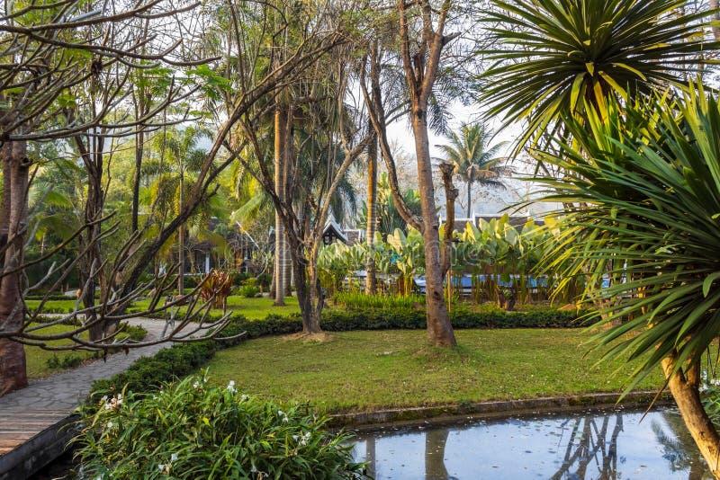Parco pubblico con uno stagno ed alberi in Luang Prabang, Laos fotografia stock