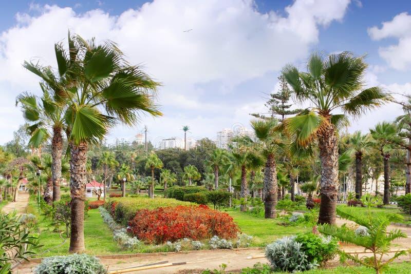 Parco reale Montazah, Alessandria d'Egitto. L'Egitto. immagini stock libere da diritti