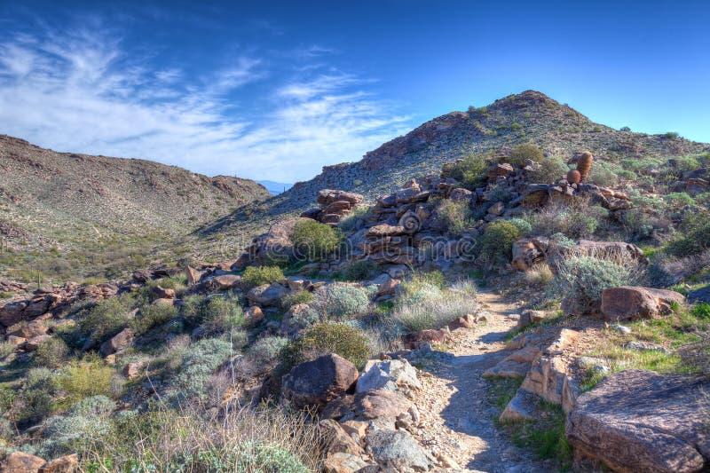 Parco regionale della montagna bianca AZ Waddell del carro armato fotografia stock