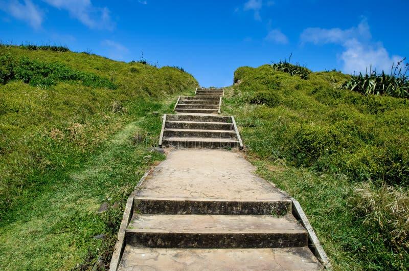 Parco regionale di Muriwai, Nuova Zelanda immagini stock libere da diritti