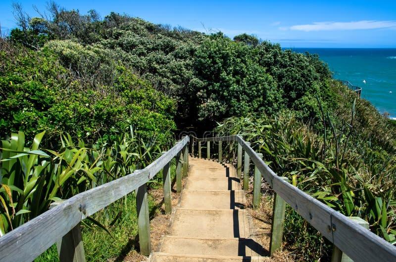 Parco regionale di Muriwai, Nuova Zelanda fotografia stock libera da diritti