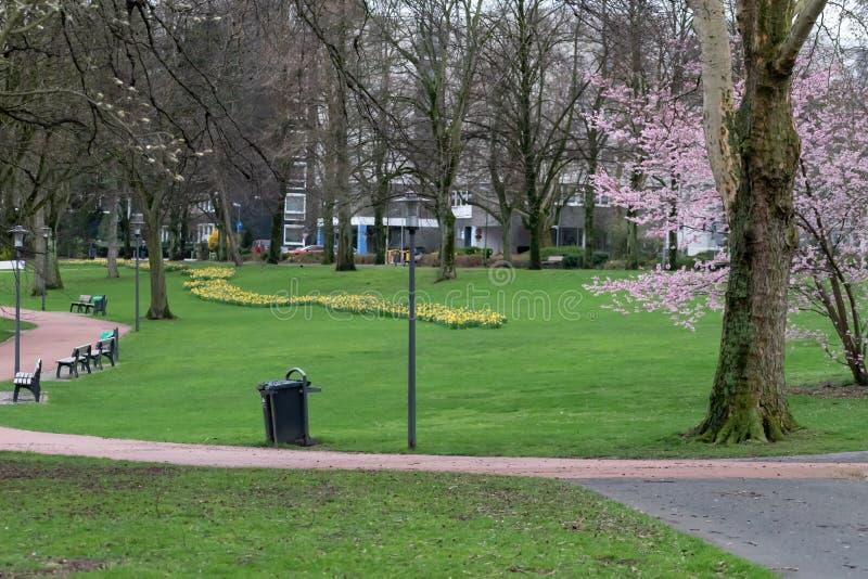 Parco tedesco della città nella molla in anticipo fotografia stock libera da diritti