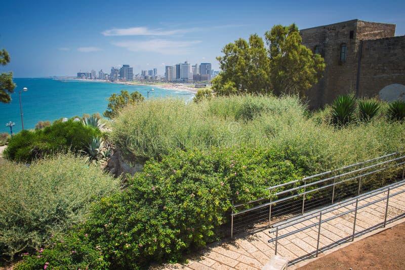 Parco a Tel Aviv immagine stock