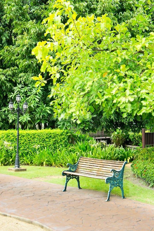 Parco tropicale fotografia stock libera da diritti