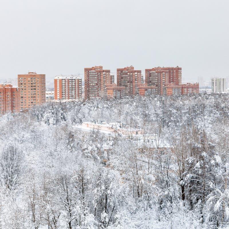 parco urbano e case residenziali nell'inverno immagine stock