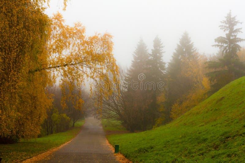 Parco vago di autunno fotografia stock libera da diritti